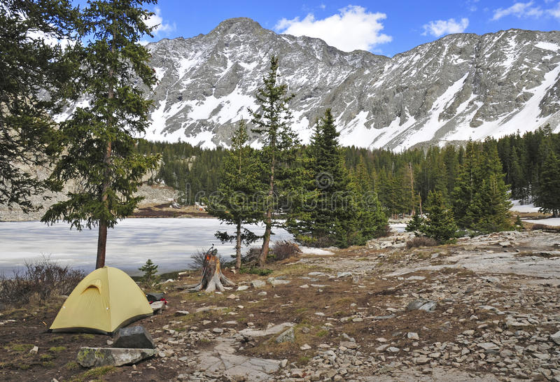 Camping tent in the mountains. Colorado Rockies, Colorado royalty free stock image