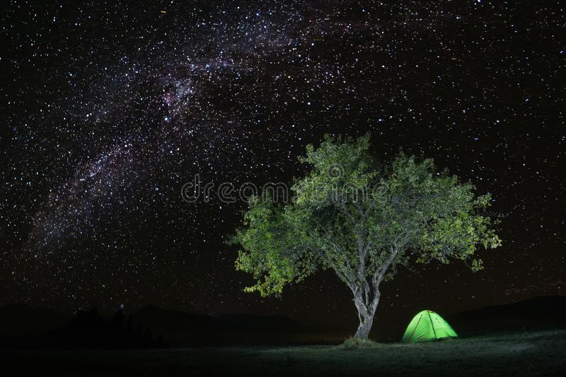Download Camping Under The Starry Sky Stock Image - Image of amazing, flora: 105235861