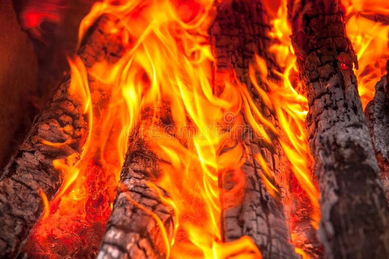 Wood fire. Camping wood fire and flames royalty free stock images
