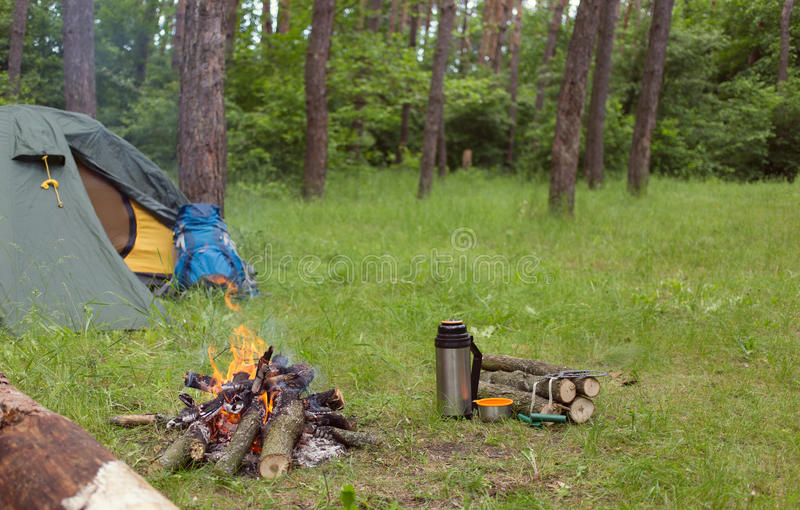 Download Camping In The Woods Stock Photo Image Of Holiday