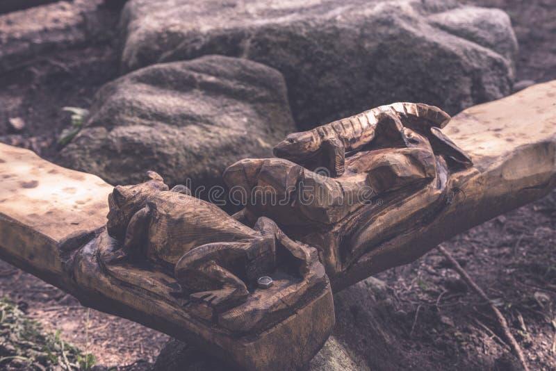 campingowy i odpoczynkowy teren rzeką z - zdjęcie royalty free