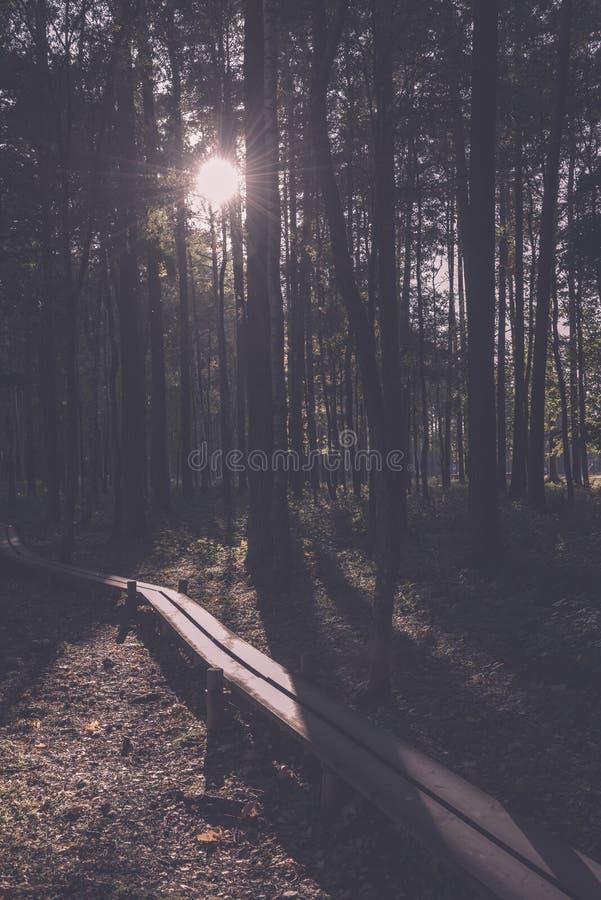 campingowy i odpoczynkowy teren rzeką z - obraz stock