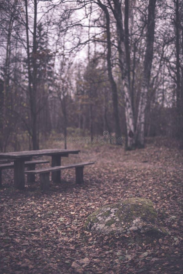 campingowy i odpoczynkowy teren rzeką z - zdjęcia royalty free