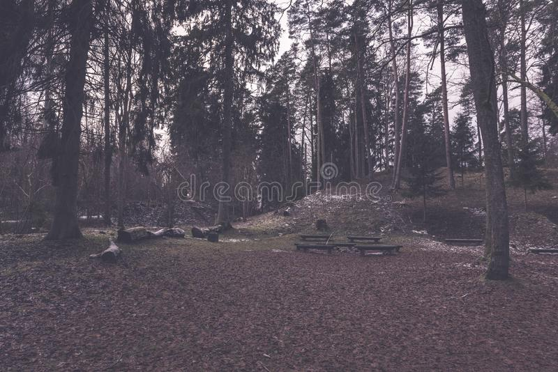 campingowy i odpoczynkowy teren rzeką z - zdjęcie stock