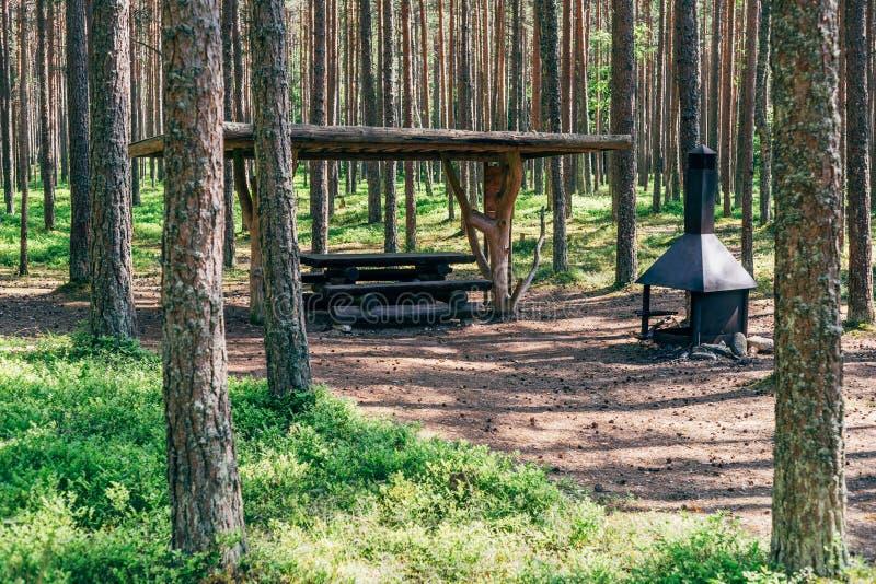 Campingplats i sommarskog arkivbilder
