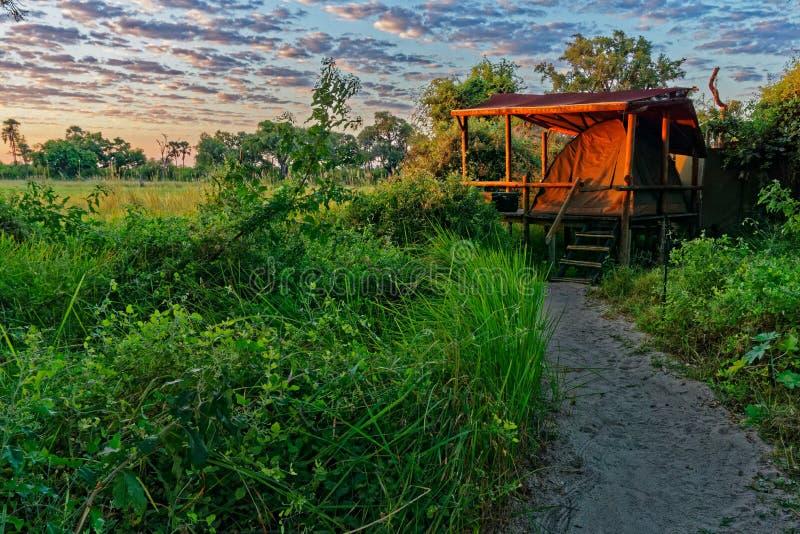 Campingplatz, Okavango-Delta, Botswana stockbild