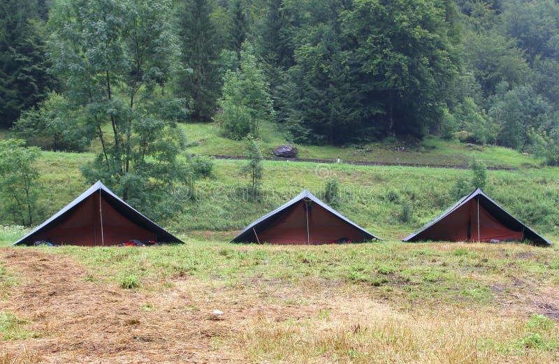 campingzelte in einem pfadfinder kampieren auf dem rasen. Black Bedroom Furniture Sets. Home Design Ideas