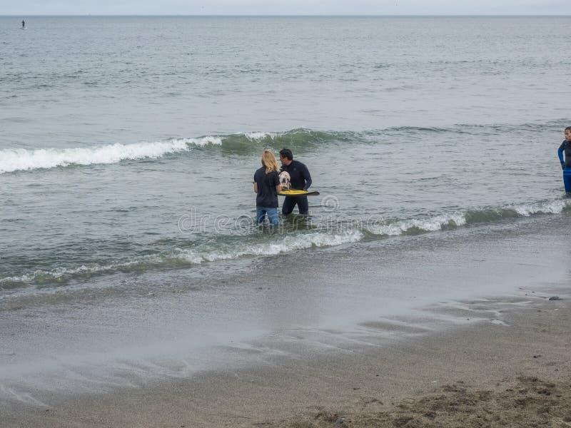 Campionati praticanti il surfing del cane del mondo immagini stock