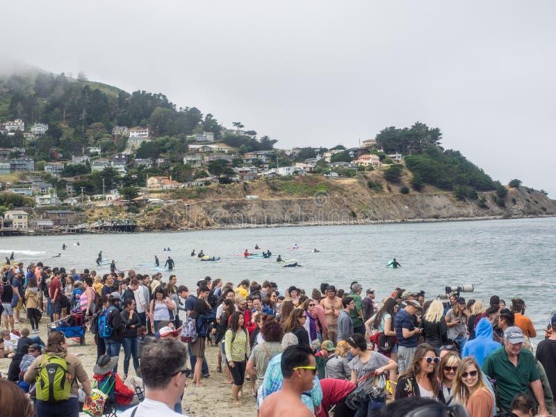 Campionati praticanti il surfing del cane del mondo fotografia stock