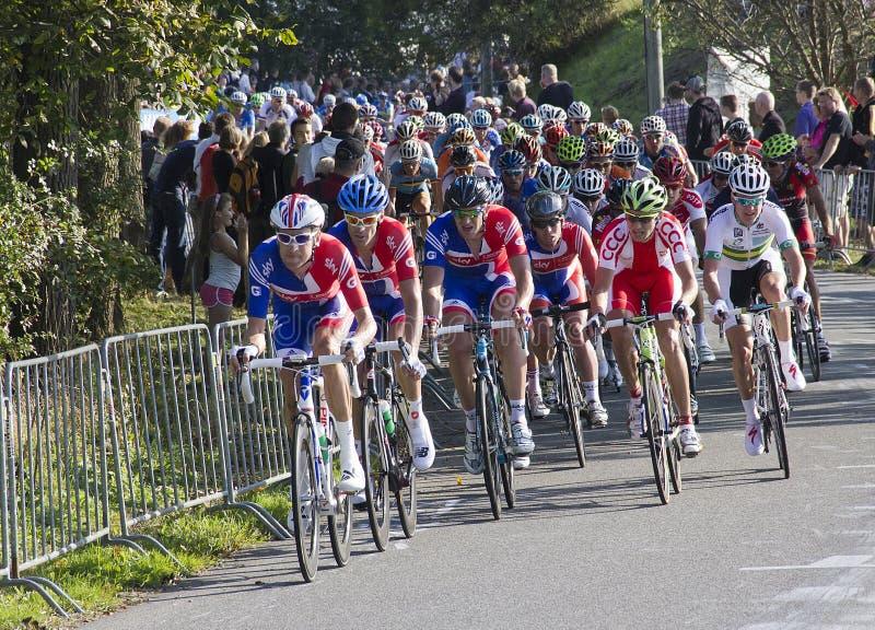 Campionato del mondo della corsa di strada di UCI per gli uomini dell'elite immagine stock
