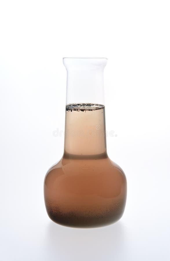 Campione di acqua sporca isolato su bianco fotografia stock libera da diritti