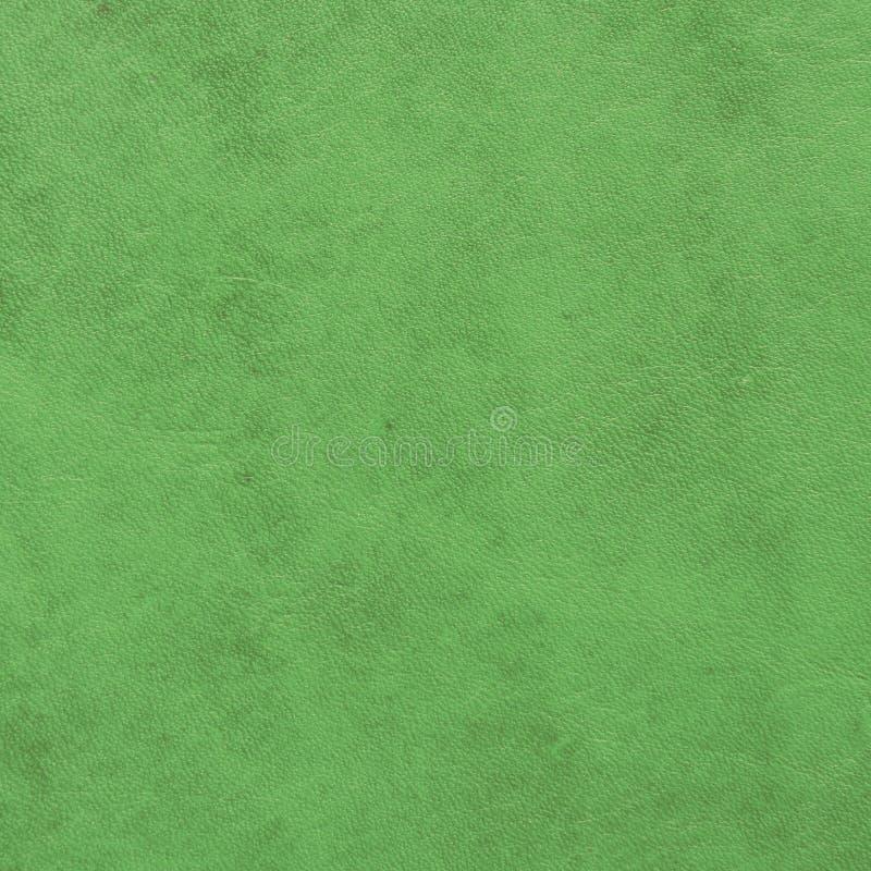 Campione di cuoio verde fotografia stock