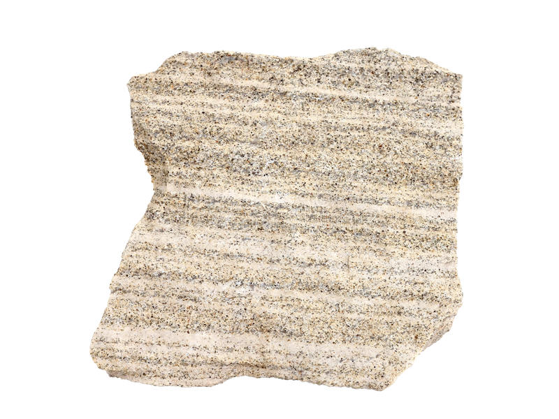 Campione naturale di calcare sabbioso stratificato - una roccia sedimentaria comune su fondo bianco fotografia stock libera da diritti