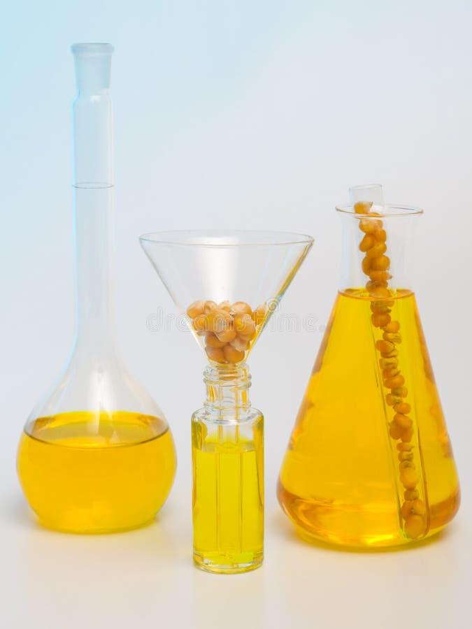 Campioni del combustibile biologico immagini stock libere da diritti