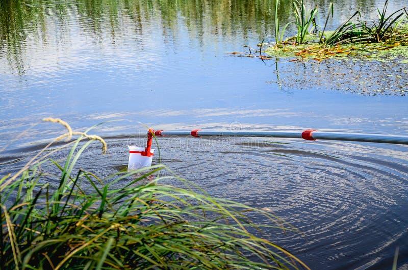 Campioni della presa di acqua per prova di laboratorio Il concetto - analisi di purezza dell'acqua, ambiente, ecologia fotografia stock libera da diritti