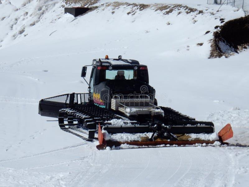 Campitello Matese - gato negro de la nieve fotos de archivo