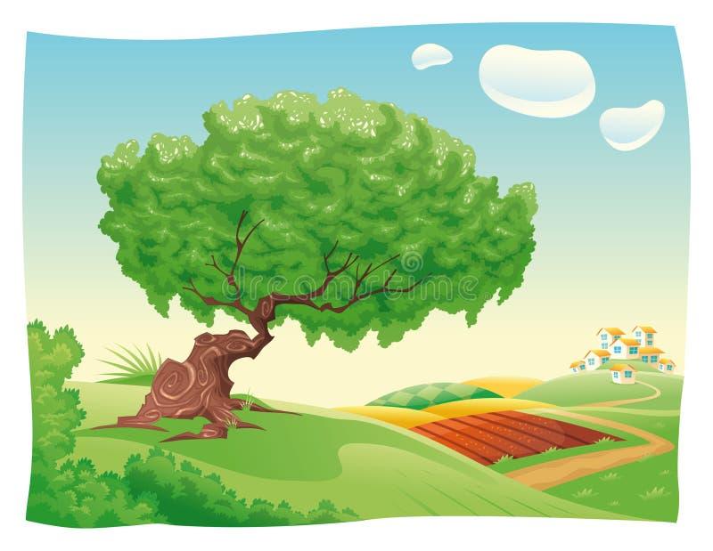 Campo. ilustración del vector