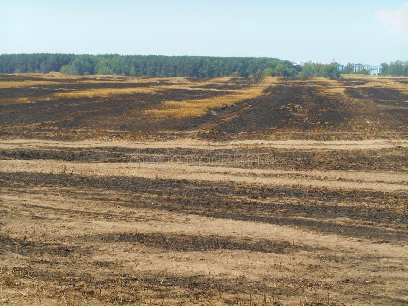 Campo afetado pelo fogo imagens de stock royalty free