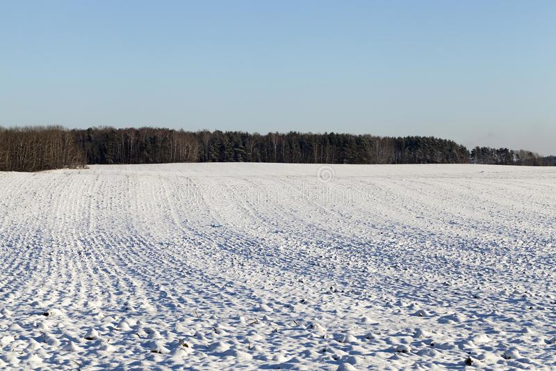 Campo agrícola arado cubierto por la nieve foto de archivo