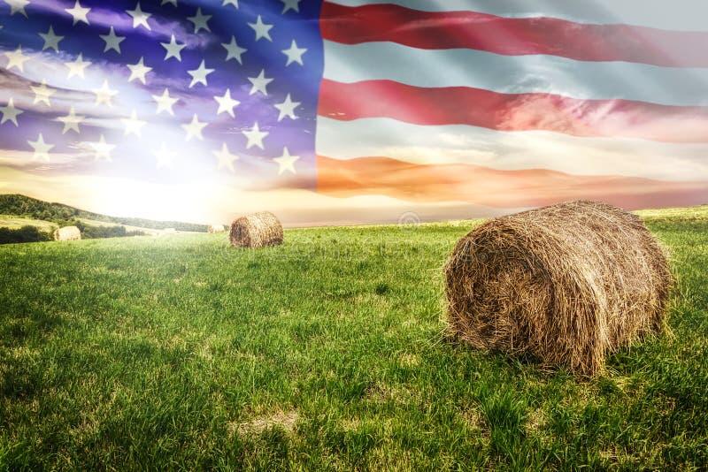 Campo americano dell'azienda agricola fotografie stock