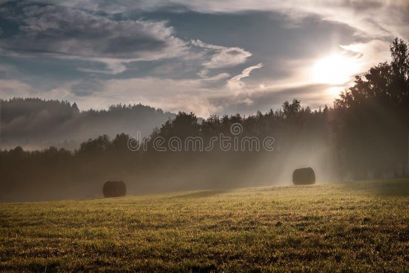 Campo antes do por do sol foto de stock royalty free