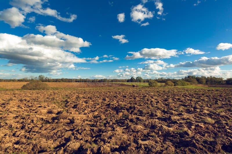 Campo arado agricultura com o reboque vazio após ter pegarado a batata da colheita e o céu azul com as nuvens no por do sol tilla foto de stock royalty free