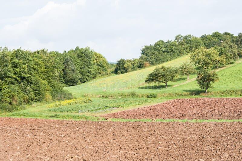 Campo arado con los árboles fotos de archivo