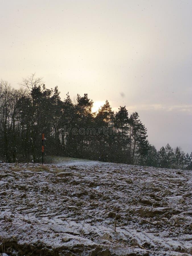 Campo arado nevado al lado del bosque imagen de archivo libre de regalías