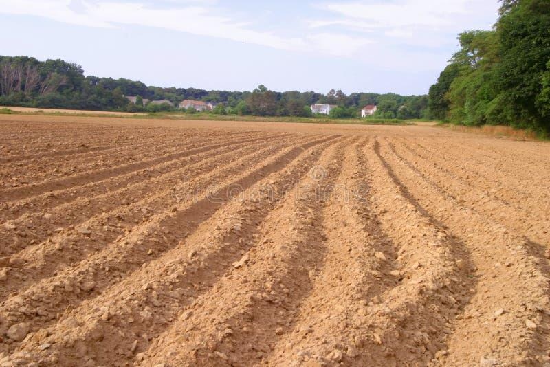 Campo arado para colheitas da queda imagens de stock royalty free