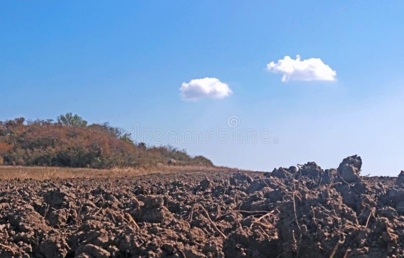 Campo arato con suolo marrone, cielo blu fotografia stock