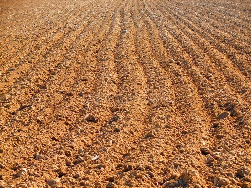 Campo arato in primavera immagini stock libere da diritti