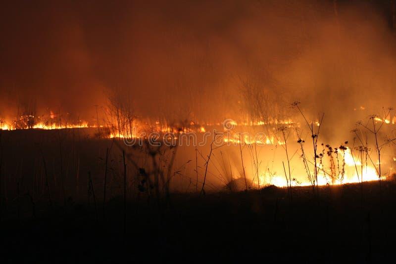 Campo ardente na noite fotografia de stock royalty free