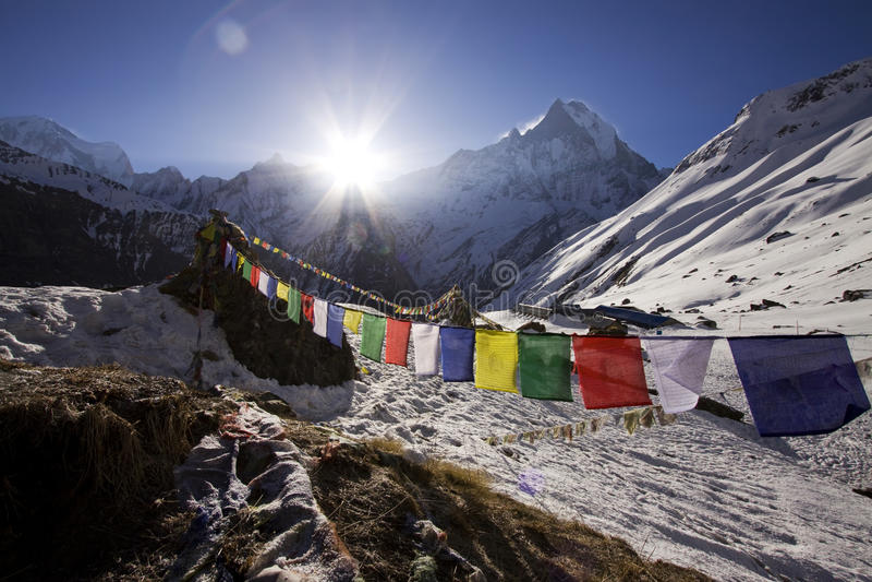 Campo bajo de Annapurna con el machhapuchhre fotografía de archivo