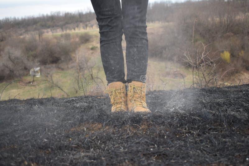 Campo bruciato fotografie stock libere da diritti