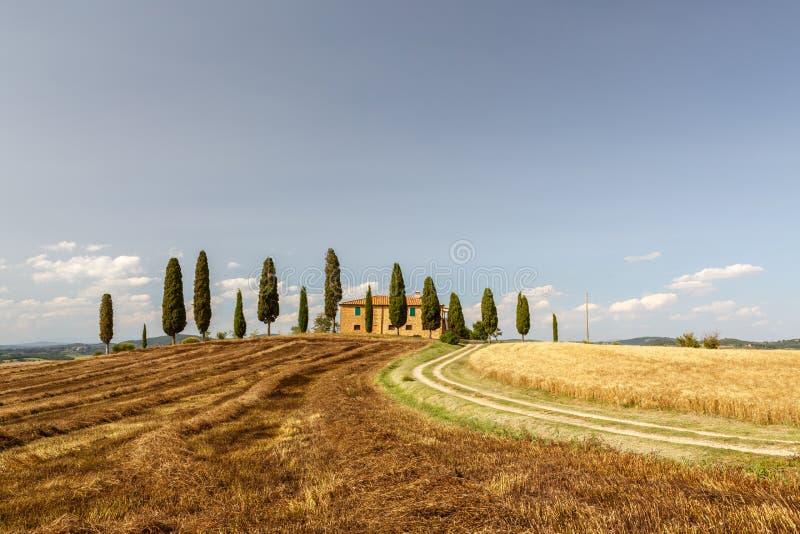 Campo cerca de Pienza, Toscana, Italia fotos de archivo