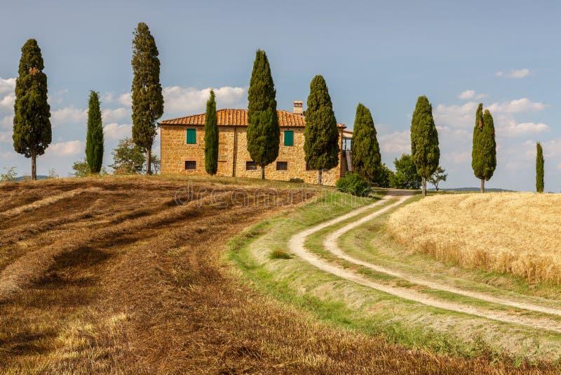 Campo cerca de Pienza, Toscana, Italia foto de archivo