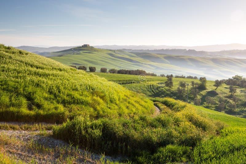 Campo cerca de Siena, Toscana imágenes de archivo libres de regalías