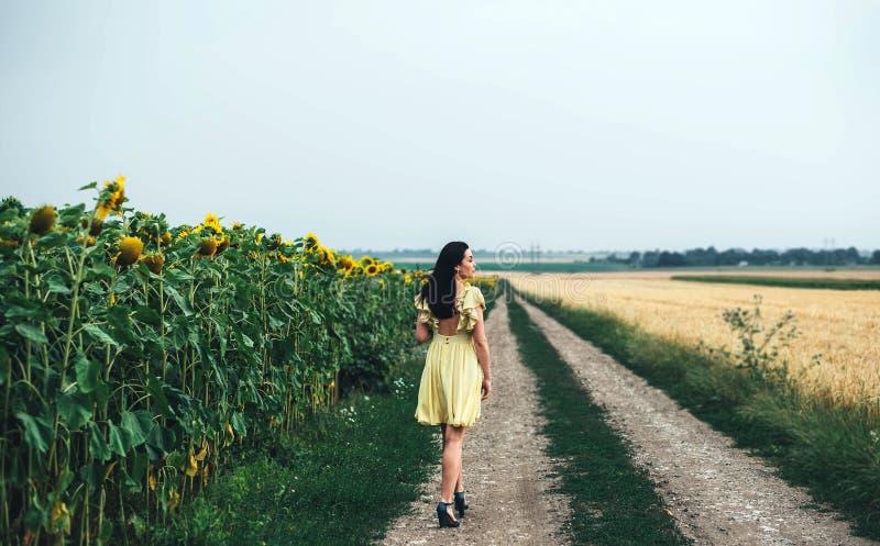 campo cercano al aire libre relajante del girasol de la muchacha morena foto de archivo