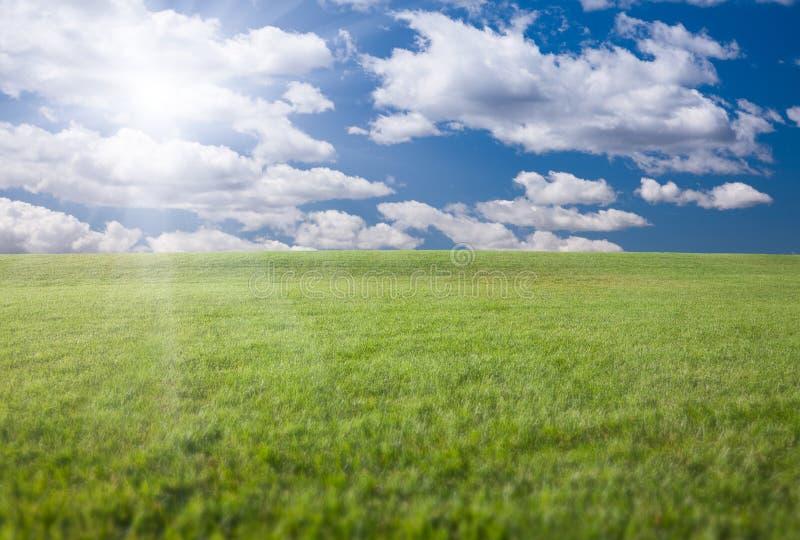 Campo, cielo blu e Sun di erba verde fotografia stock libera da diritti