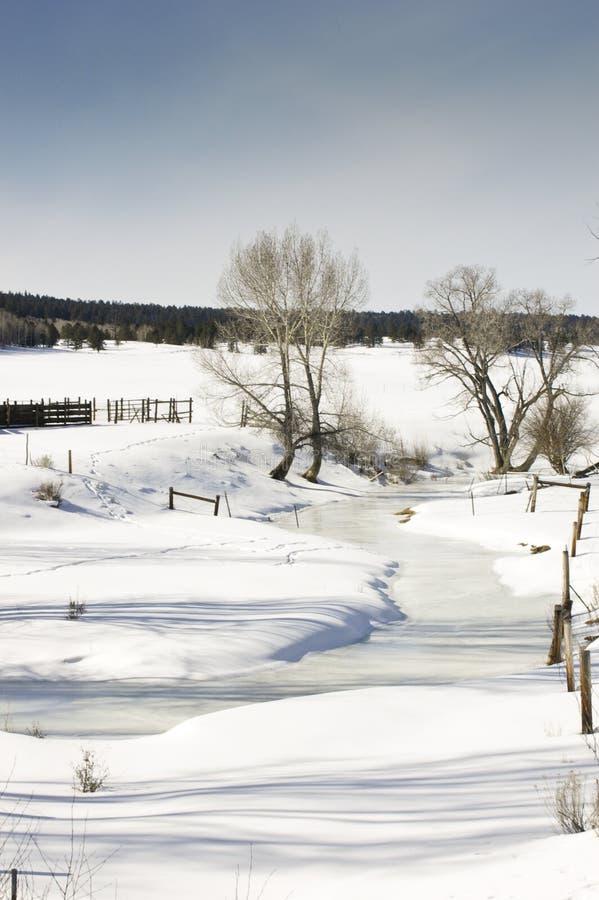 Campo coberto de neve fotografia de stock