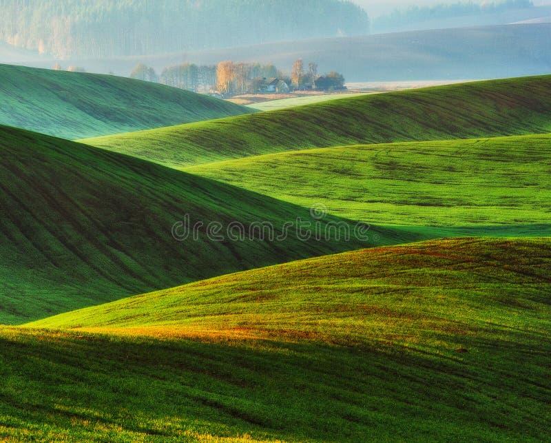 Campo collinoso colline pittoresche del campo di autunno immagini stock libere da diritti