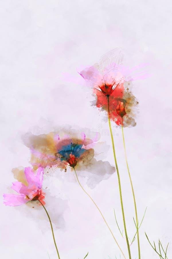 Campo colorido do cosmos no fundo cor-de-rosa Pintura da aquarela de Digitas ilustração do vetor