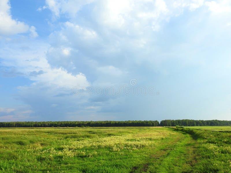 Campo colorido y cielo nublado hermoso, Lituania fotos de archivo