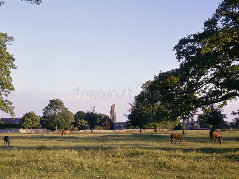 Campo común escénico de Cotswolds - de Minchinhampton fotografía de archivo libre de regalías