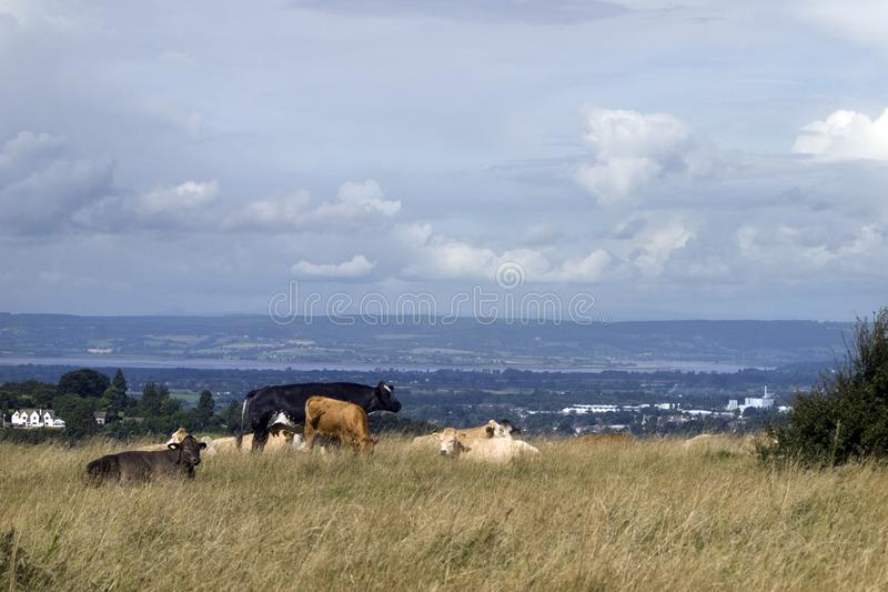 Campo común escénico de Cotswolds - de Rodborough fotos de archivo