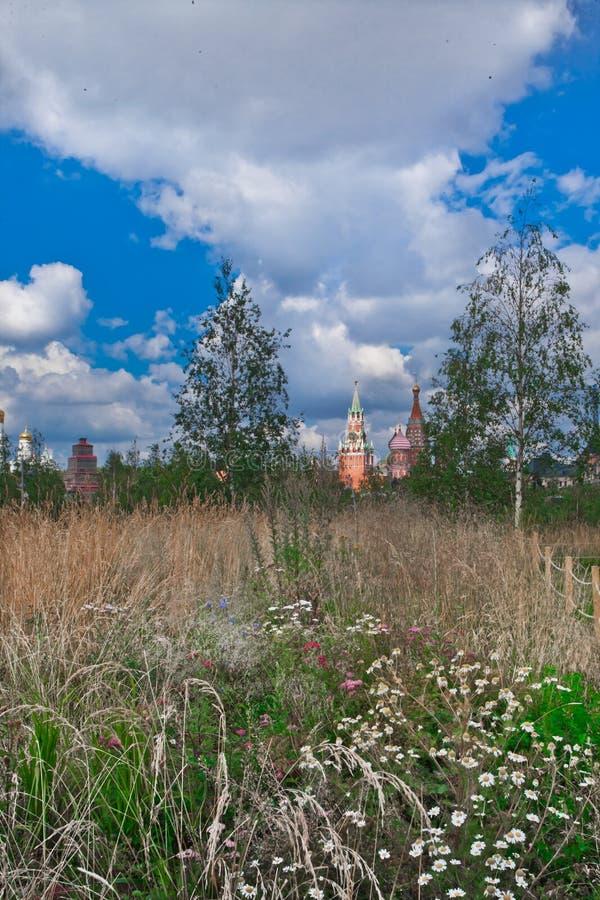 Campo com flores e o Kremlin de Moscou imagens de stock