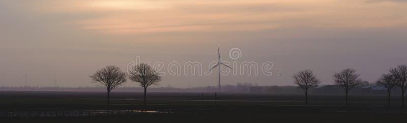 Campo con los árboles y los molinoes de viento en el horizonte por la tarde Paisaje holandés típico fotos de archivo