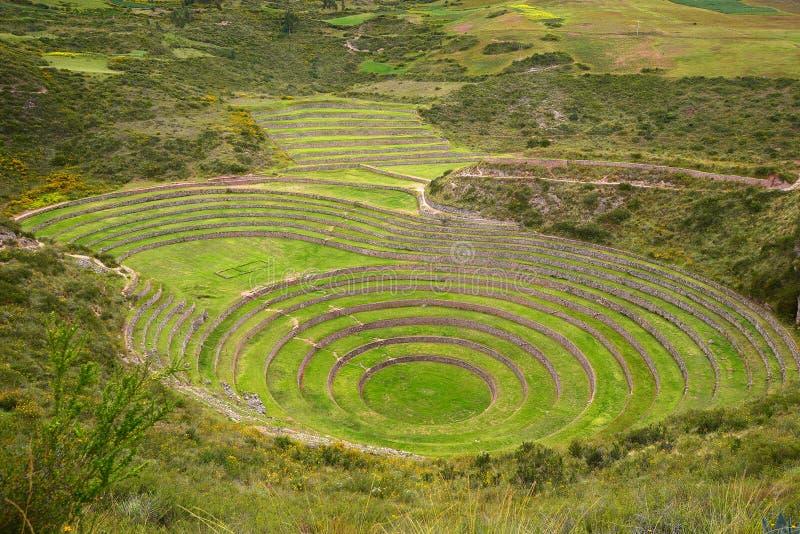 Campo da agricultura do Inca imagens de stock royalty free