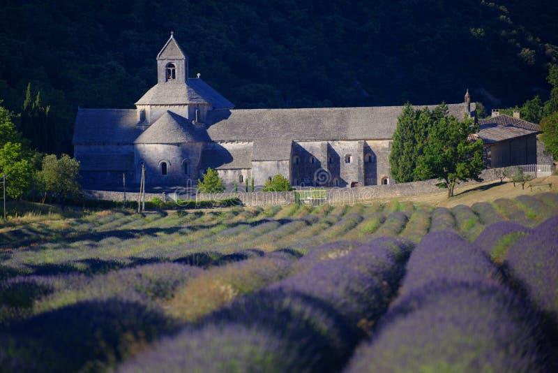 Campo da alfazema na frente da abadia imagens de stock royalty free