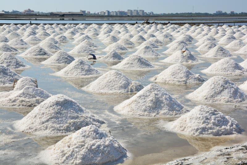 Campo da bandeja de sal ou do sal imagens de stock